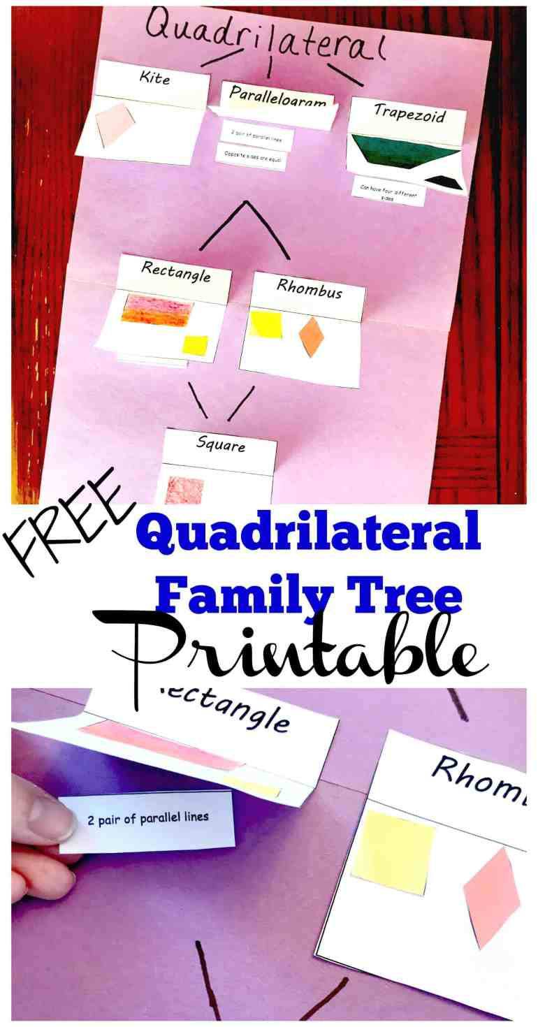 Free Printables To Help You Create A Quadrilateral Family Tree