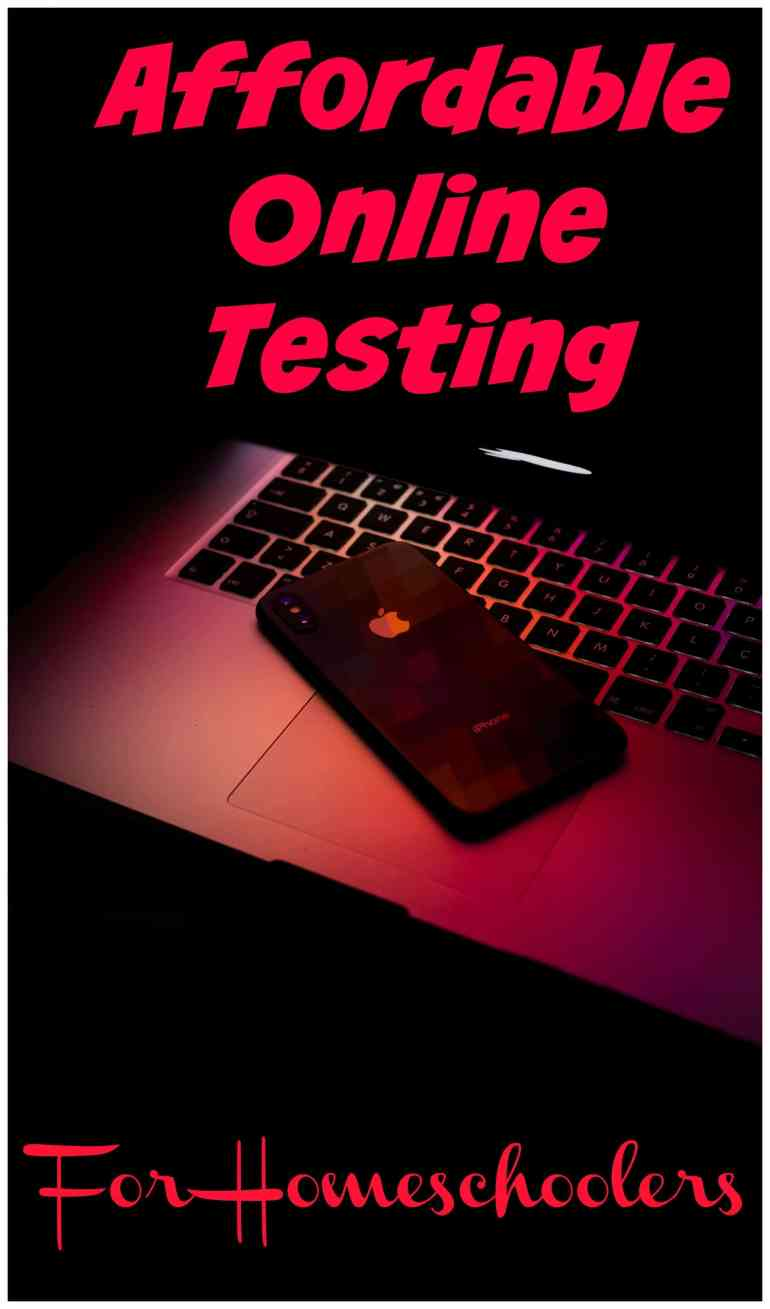 You will love how easy and afforadable this online homeschool testing is!!! It is a wonderful way to assess which skills need reviewed or have been mastered.