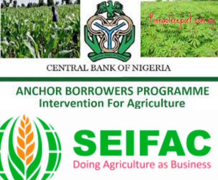 SEIFAC/CBN Anchor Borrowers