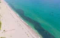 Balıkçıların Drone Kameralarından Çılgın Görüntüler!