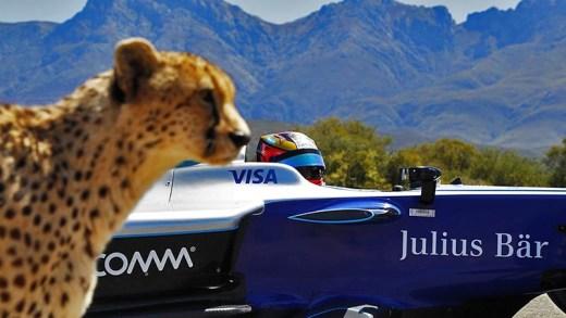 Formula E ve Çita Drag yarışı