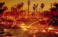 Kaliforniya Yangın Söndürme Çalışmaları Tam Gaz Devam