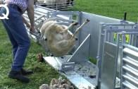 Yenilikte Resmen Çığır Açmış Modern Çiftlik Makineleri