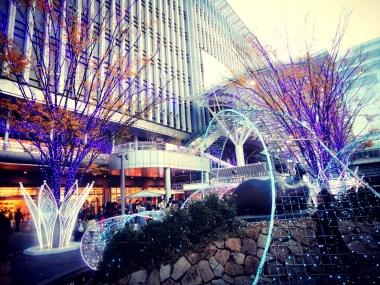 12_Christmas Market n illumination (21)
