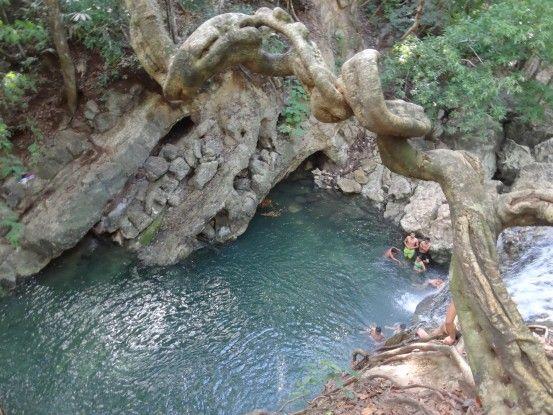 La nature est très présente à la Finca El Paraiso photo blog voyage tour du monde travel https://yoytourdumonde.fr