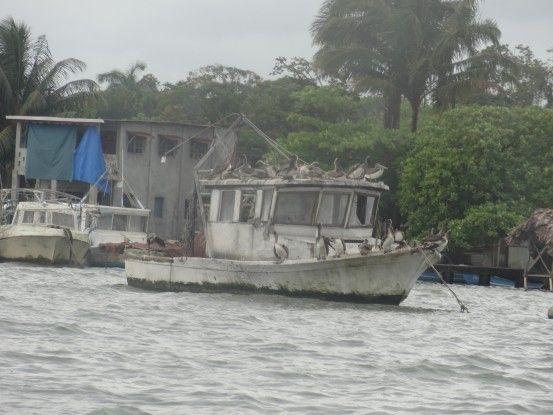 En allant du coté de Livingston au Guatemala photo blog voyage tour du monde travel https://yoytourdumonde.fr