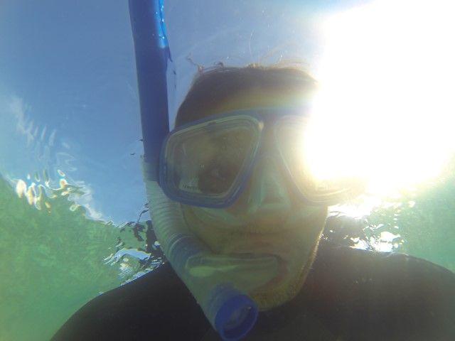 Ile de Lifou: C'est partie pour decouvrir je l'espere une tortue et nager avec.