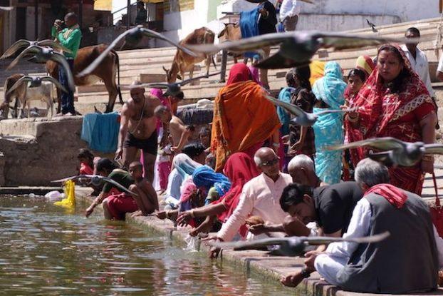 Pushkar est une ville sainte en inde du nord ou des millions d'hindouistes viennent se baigner dans le lac sacre de pushkar photo blog voyage tour du monde https://yoytourdumonde.fr