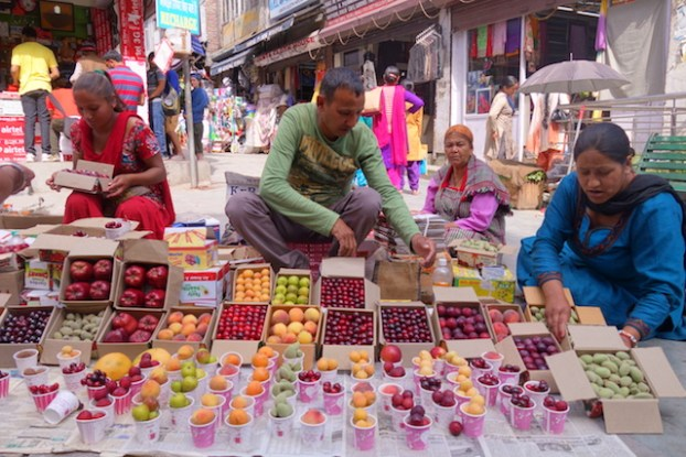 shop fruit manali photo voyage tour du monde https://yoytourdumonde.fr