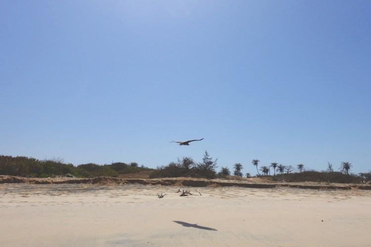 D'octobre à avril la météo est parfaite pour prendre quelques vacances en Casamance photo blog voyage tour du monde https://yoytourdumonde.fr