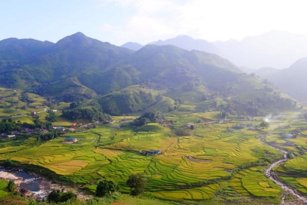 Beauté des rizières en terrasses de Sapa au Vietnam photo blog voyage tour du monde https://yoytourdumonde.fr