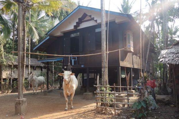 les maisons sur pilotis sur l'ile de l'ogre sont des maisons typique que vous retrouvez dans le sud-est de la birmanie comme la ville de Mawlamyine photo blog voyage tour du monde https://yoytourdumonde.fr