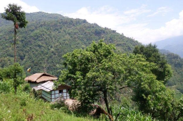 Climat alpin mais aussi semi tropical le Sikkim a beaucoup de climat tres différent du fait de son alttitude. Photo blog voyage tour du monde https://yoytourdumonde.fr