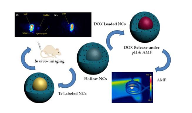 Νανοτεχνολογία υπερθερμία ογκοθερμία Το φάρμακο απελευθερώνεται μέσα στον καρκίνο, με την επίδραση υπερθερμίας  (Quadruple stimuli targeted nanocontainers)