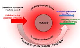 Ομοιότητες και διαφορές μεταξύ κλασσικής υπερθερμίας και ογκοθερμίας