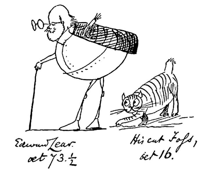 Edward Lear and nonsense poetry: a new writing challenge