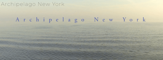 Screen Shot 2018 06 22 at 10.28.50 AM 540x200 - Book Release-Archipelago New York @ArchipelagoNY @Schifferbooks