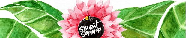 Screen Shot 2019 08 01 at 3.07.03 PM - Secret Summer NYC August 4, 2019 @SecretsummerNYC @RAPTNY @TheHighLifeProductions @AssantePR #secretsummernyc