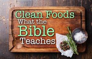 clean foods bible kosher