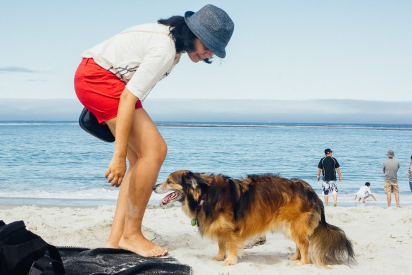 Carmel vacation dogs pets travel summer holidays July 4 Independence day california beach