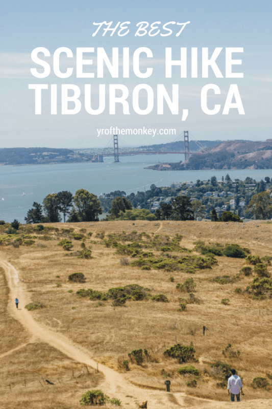 Hiking Tiburon Bay area Dogs dog friendly California