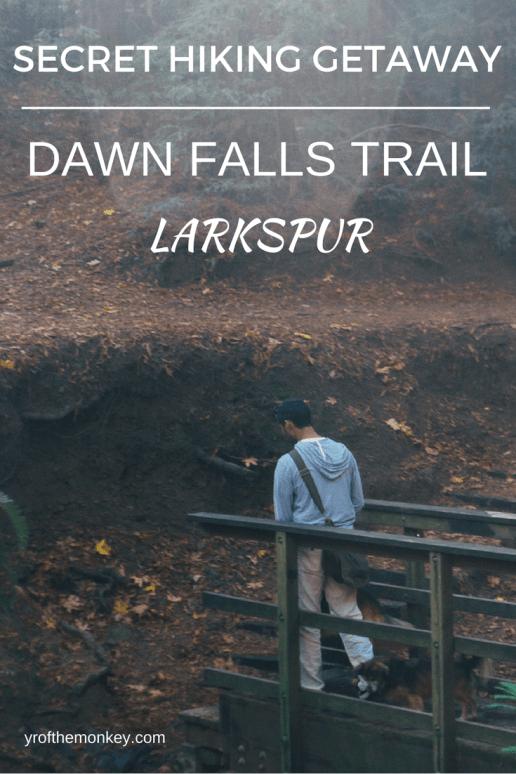 Larkspur hiking dogs Dawn falls trail