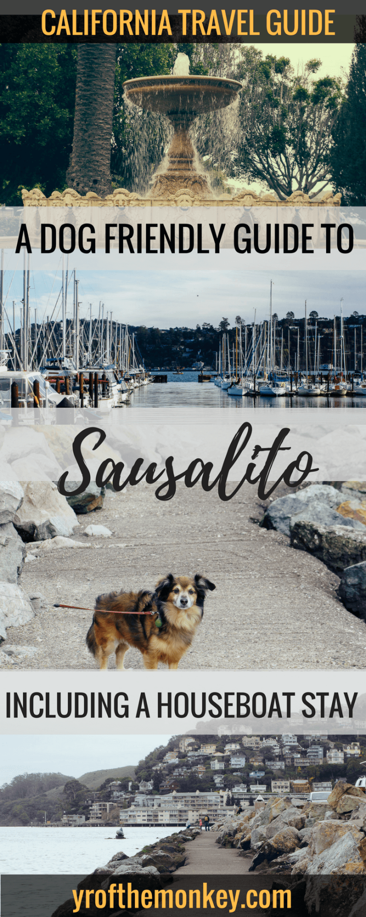 Dog Friendly Sausalito is your guide to Sausalito, California, USA which has many dog friendly things to do. Visit this Charming California town for a unique stay on a houseboat with your dog along with many other fun things to do! Pin this to your California or USA or pet travel board now! #dogfriendlytravel #travelwithpets #sausalito #californiavacation #USA
