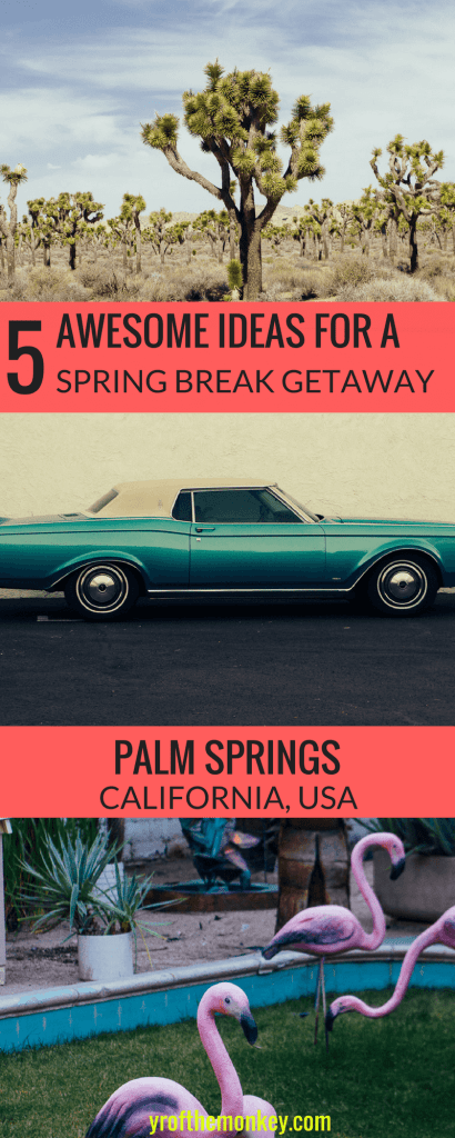 Looking for a perfect spring break getaway destination? Look no further than Palm Springs, in southern California, USA. This Palm Springs getaway guide has five terrific idea for a romantic weekend at Palm Springs. Save this weekend trip to Palms Springs post to your USA or California guide for later! #palmsprings #california #joshuatree #USA #mojavedesert #joshuatree #joshuatreenationalpark #southerncalifornia
