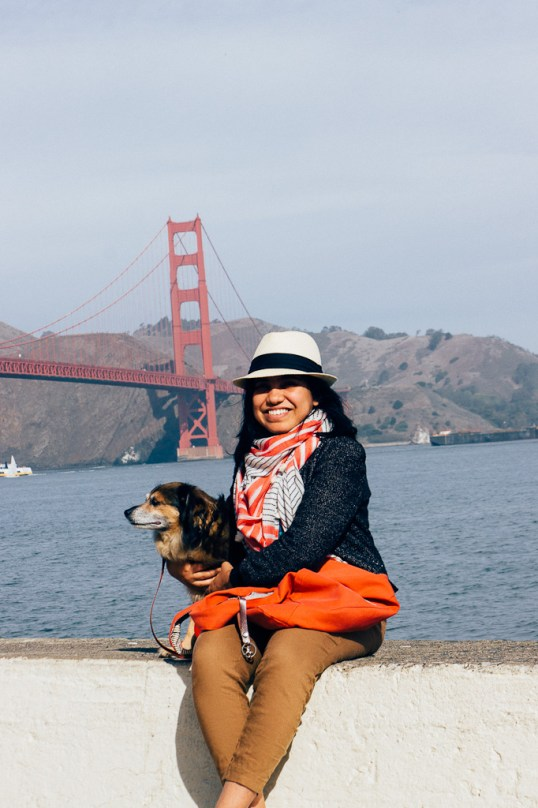 dog friendly San Francisco, dog friendly guide, dog friendly spots in San Francisco, where to take your dog in San Francisco, dog friendly beaches, San Francisco beaches, dogs at beaches, SF beaches that welcome dogs, Crissy Field