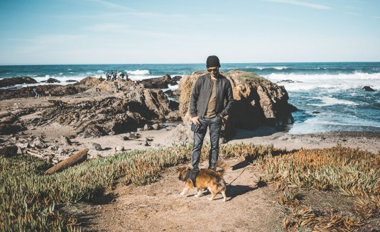 dog friendly guide to Mendocino, pet friendly activities in Mendocino, Mendocino with dogs, what to do with your dog in Mendocino, dog friendly beaches in Mendocino and Fort Bragg