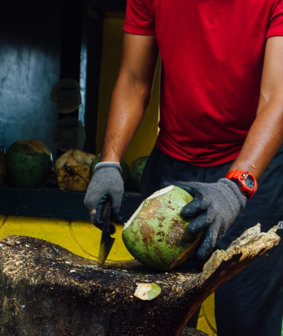 Puerto Rico El Yunque rainforest green food travel island Caribbean USA territory summer vacation