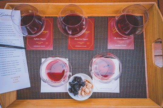 dog friendly wineries in Anderson Valley