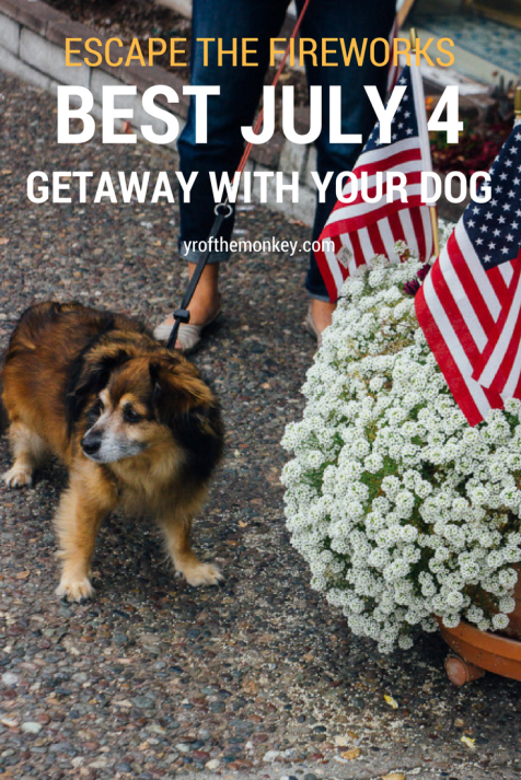 Carmel California dog friendly travel road trip travel with dogs July 4 beach Pacific ocean