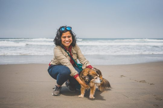 Dillon beach is one of the few dog friendly beaches in Point Reyes, things to do with your dog in Point Reyes