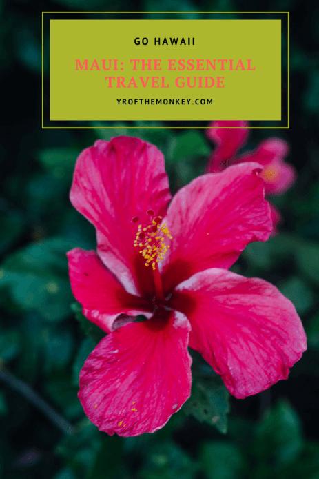 Travel Hawaii Maui visitors guide