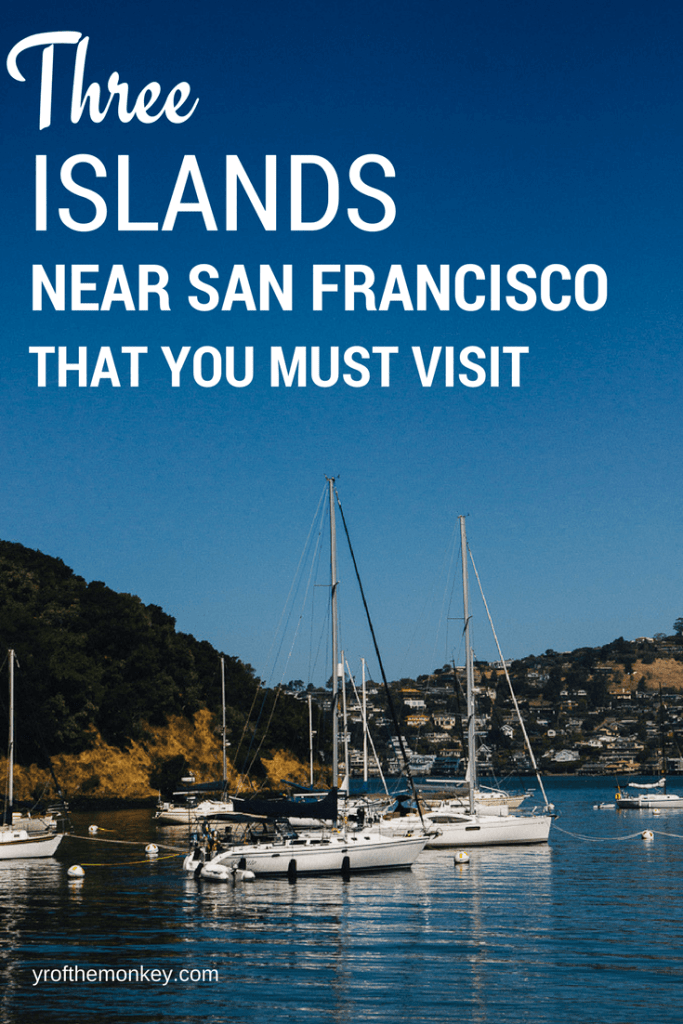 San Francisco Bay islands includes three small islands that you can easily visit by car or ferry and make for great half day trips. As a local, I highly recommend visiting these islands for their history, hikes, natural beauty, flea markets and to get some of that wonderful Pacific ocean breeze in your hair. Not to mention panoramic views all around! #sanfrancisco #alcatraz #islands #sfbayarea #california #USA