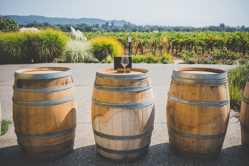 dog friendly wineries in Sonoma, dog friendly wine tasting in Sonoma, sonoma dog friendly wineries, California wineries that welcome dogs, dry creek wineries, Russian river wineries, dry creek valley, Healdsburg wineries, Kenwood wineries, Quivira winery