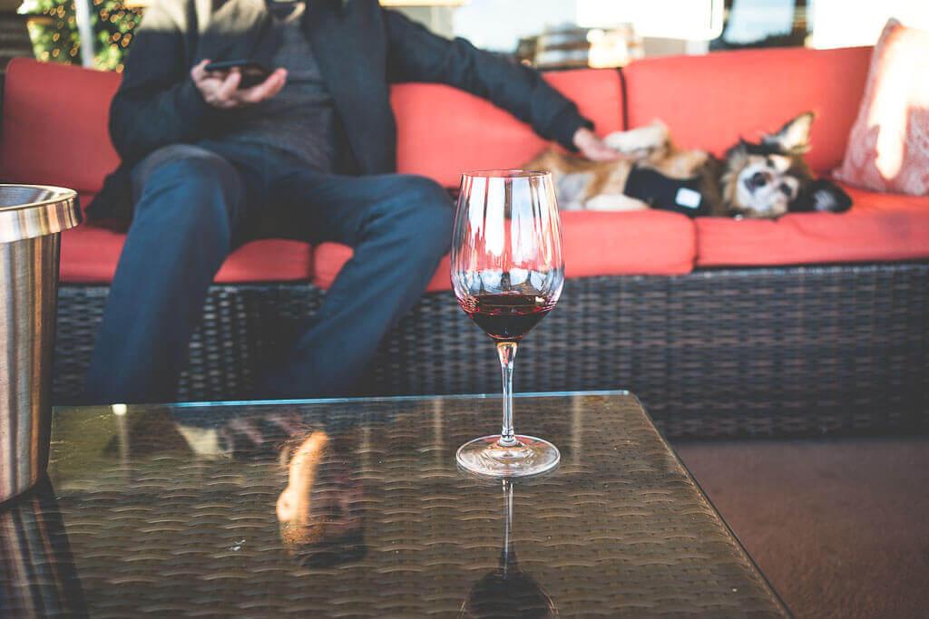 dog friendly wineries in Sonoma, dog friendly wine tasting in Sonoma, sonoma dog friendly wineries, California wineries that welcome dogs, dry creek wineries, Russian river wineries, dry creek valley, Healdsburg wineries, Kenwood wineries, Sbragia winery wine tasting