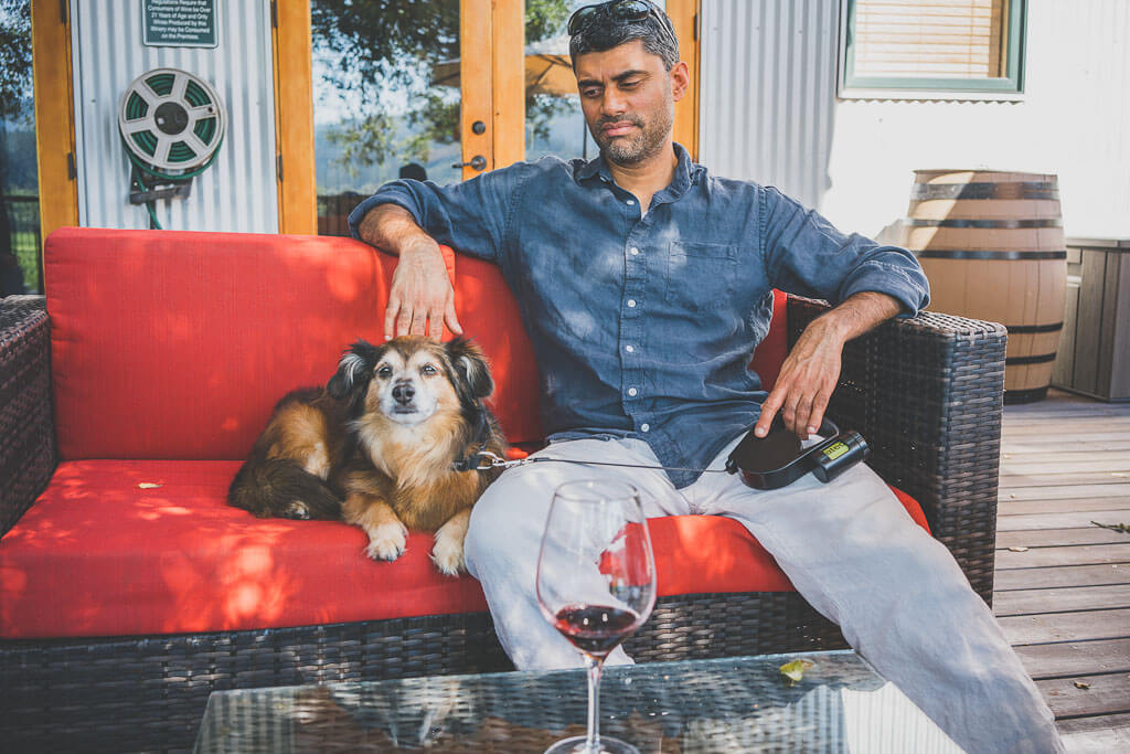dog friendly wineries in Sonoma, dog friendly wine tasting in Sonoma, sonoma dog friendly wineries, California wineries that welcome dogs, dry creek wineries, Russian river wineries, dry creek valley, Healdsburg wineries, Kenwood wineries, Wilson winery