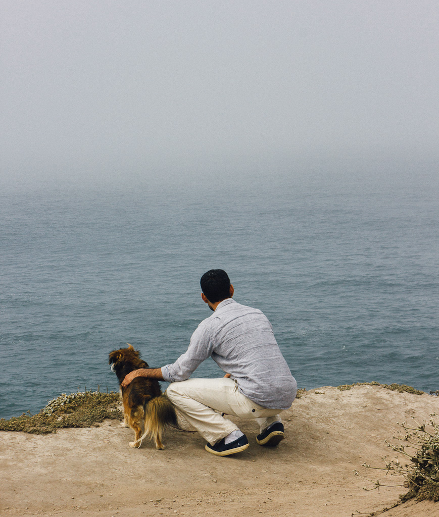 beaches where dogs are allowed in California, Gualala point regional park and beach