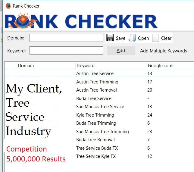 Austin Search Engine Optimization Results