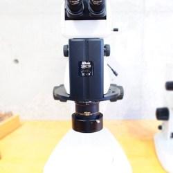 microscope11 pic