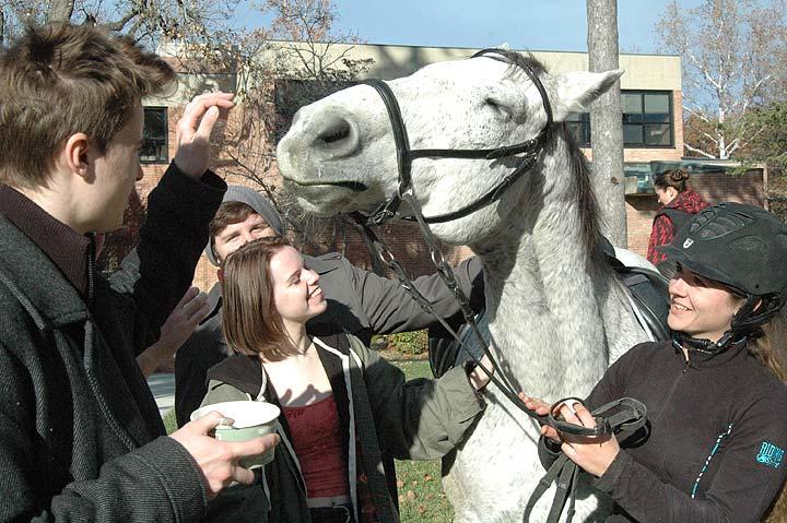 Horseplay at school