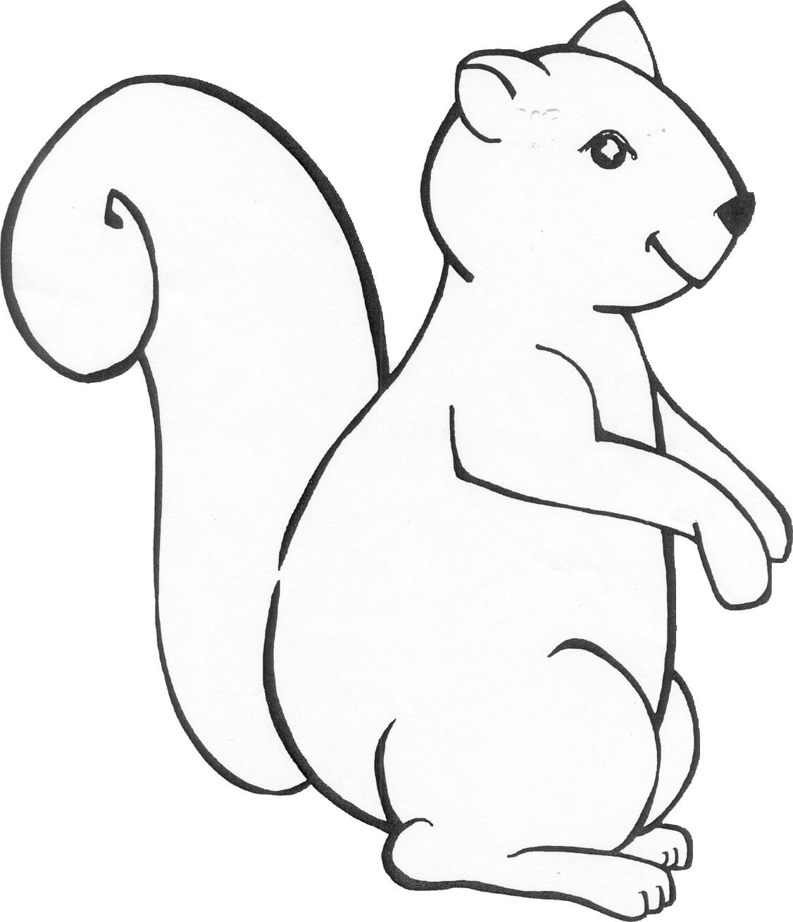 Public Library Program Ideas / Squirrels