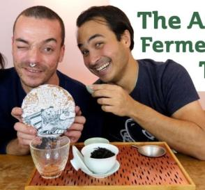 The Art of Fermenting Tea