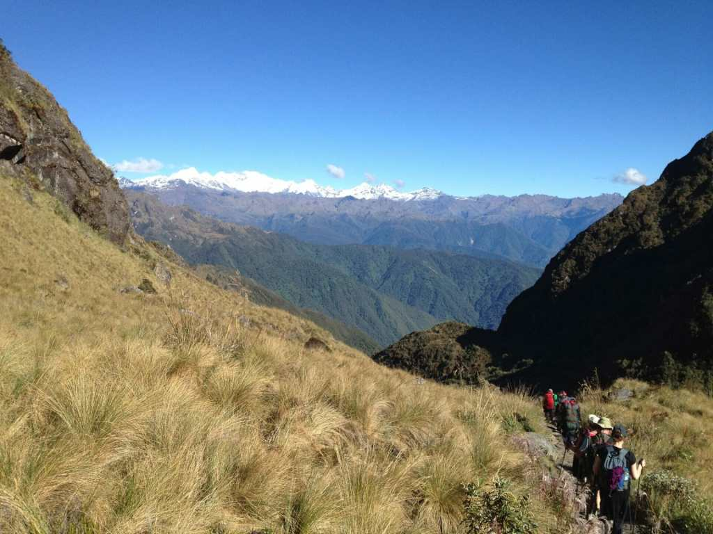 Cloud Forest, Inca Trail,