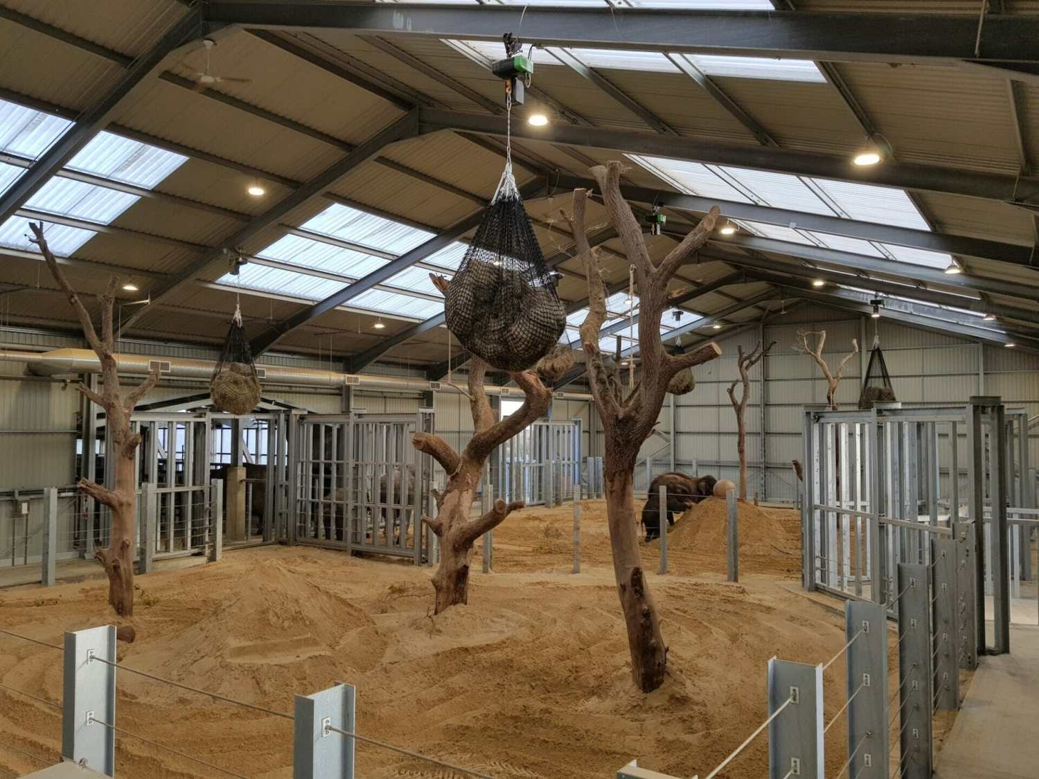ZSL Whipsnade Centre For Elephant Care