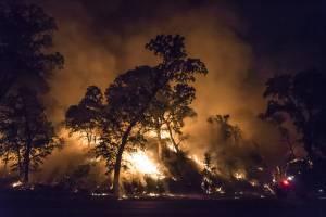 CAL FIRE photo