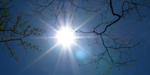 A team of scientists has analysed cyclically changing patterns of sunlight and variations in climate. Image: Stanley Zimny via Flickr