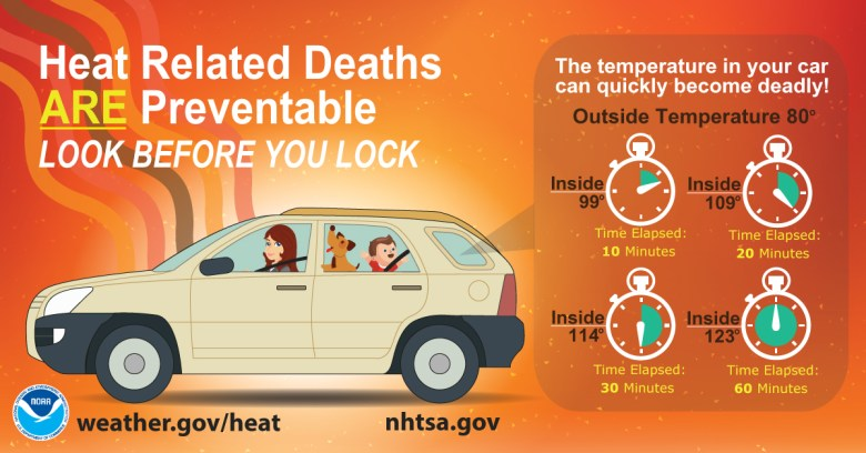 Look before you lock infographic